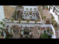 The famous patios of Córdoba are open to the public - Fiestas - Spain news