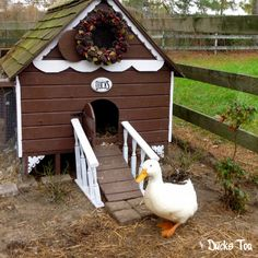 Gingerbread Duck House Plans PDF - Room in Coop for up to 6 Ducks or Chickens - Easy Build DIY