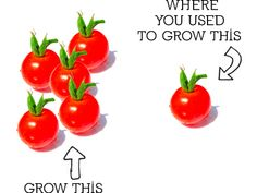 3 Great Ways to Increase the Amount of Vegetables You Can Grow #gardening
