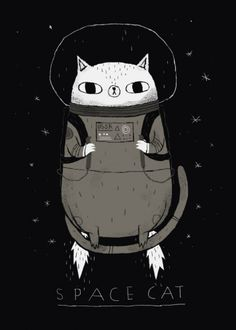 cats cat space cute Animals