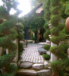 Garden terrace with cobblestone and topiaries..looks like provence to me