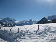 On the way down from Eggli mountain, Gstaad Switzerland <3