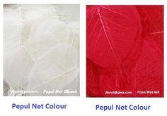 Pepul Net colour