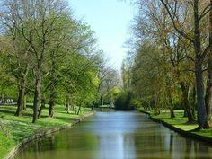 木々芽吹き淡い緑色の朝 / Minnewaterpark in Bruges, Belgium