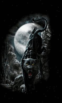 WALLPAPERS - Gothic, skulls, death, fantasy, erotic and animals: June 2012 Black Panther Cat, Black Panther Tattoo, Panther Tattoos, Big Cats Art, Cat Art, Snow Leopard Drawing, Wild Animal Wallpaper, Tiger Artwork, Jaguar Animal