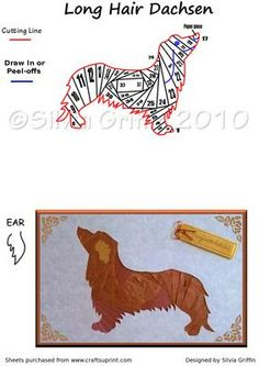 Long Hair Dachshund Wiener dog on Craftsuprint designed by Silvia Griffin - This cute Dachshund is looking for a home. Hope you can use this pattern for all your needs whatever they are. Thank you for looking. - Now available for download!