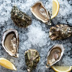 Gillardeau oysters by KirillZakabluk Fish And Seafood, Seafood Recipes, Cool Things To Buy, Food And Drink, Cooking, Amazing, Ethnic Recipes, Blog, Oysters
