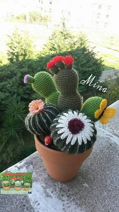 Yarn Flowers, Crochet Flowers, Handmade Crafts, Diy And Crafts, Cactus House Plants, Cactus Craft, Crochet Cactus, Crochet Dragon, Faux Plants