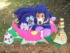 Caterpillar Puppy On His Mushroom Costume... This website is the Pinterest of pet halloween costumes