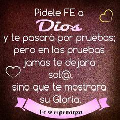 Pídele FE a Dios, y te pasará por pruebas; pero en las pruebas no te dejará sólo, sino que te mostrará su Gloria.