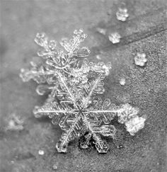 black and white macro shot of perfect snow flake crystals on a textured window sill Photo by marianna armata/Getty Images