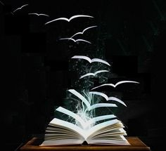 """September 7, 2013... Deborah Harkness announces that  book 3 of the All Souls Trilogy will be named:  """"The Book of Life."""" Look for the read-along board here http://pinterest.com/tlmfarmgirl/the-book-of-life-read-along/"""