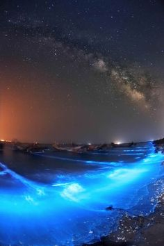 Come in Avatar: Bioluminescenza – Like Avatar: Bioluminescence Milky Way Photography, Natural Scenery, Wow Products, Galaxies, Stargazing, Ciel, Night Skies, Science Nature, Cosmos