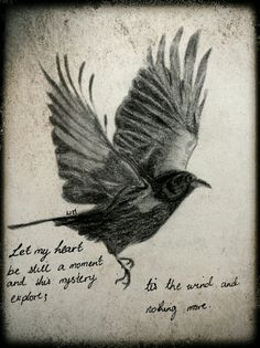 More like this: edgar allan poe , ravens and poe quotes .