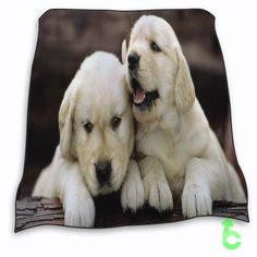 New Dog puppy babies White cute dogs Blanket