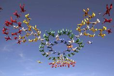 Skydivers practice for the largest double-formation world record attempt, Arizona