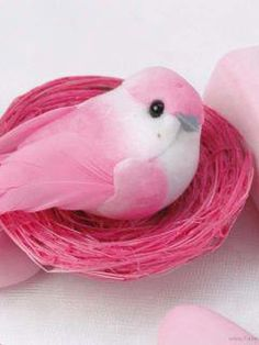 pink birds - Google Search