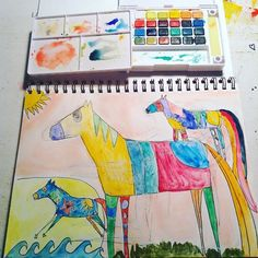Ideas about little coloured horses.  Tammy Hudgeon