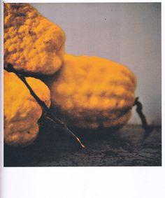 Cy Twombly, Lemons, Gaeta, 2005