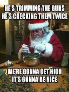 Get your laugh on to these 45 Seriously Funny Christmas Memes! Weed Jokes, Weed Humor, 420 Memes, Medical Marijuana, Stoner Quotes, Stoner Humor, Comic Cat, Seriously Funny, Funny Memes