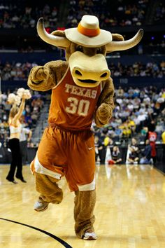 Mascot Monday: University of Texas Longhorns | Surviving College