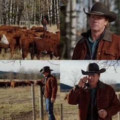 Enlarge image to see full image Heartland Ranch, Heartland Tv Show, Can You Call Me, Ty And Amy, Strong Family, Season 12, Numb, Cows, Hands