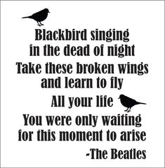 Ideas black bird lyrics tattoo beatles songs for 2019 Beatles Songs, Beatles Quotes, Lyric Quotes, The Beatles, Beatles Art, Tattoo Quotes, Blackbird Singing, Pickup Lines, Long Distance