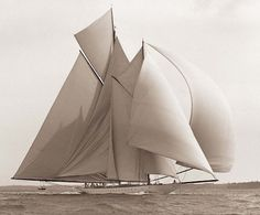 Did you know that National Georgraphic tours offers cruises on a clipper ship nearly as romantic as this yaught! (-: