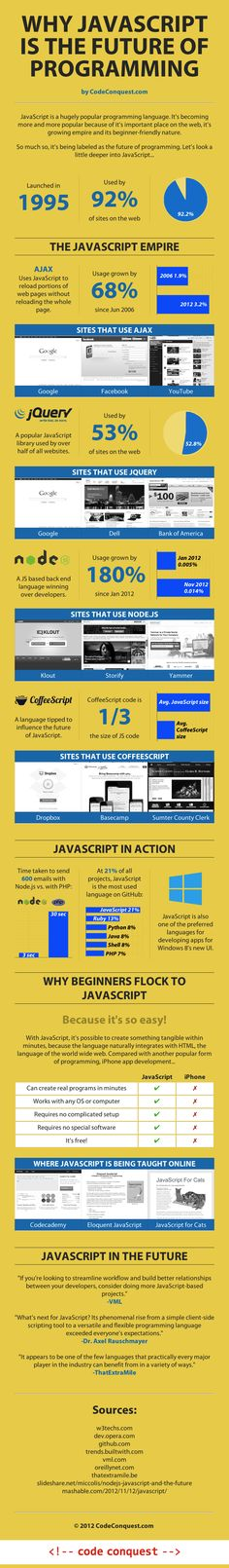 Why JavaScript is the Future of Programming [Infographic]