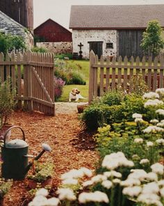 Multiple original barns with stone foundations, a natural picket fence, many gardens, and old dog.