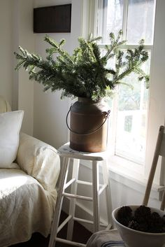 Christmas | Xmas | Jul | Noël. Natural Decoration. Evergreen. Greens.