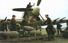Forums / RAF Library / Hawker Typhoon - Axis and Allies Paintworks Ww2 Aircraft, Military Aircraft, Westland Whirlwind, Hawker Tempest, Photo Avion, Hawker Typhoon, Ww2 Planes, Fighter Pilot, Nose Art