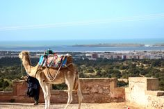 Breathing… in Essaouira | A Curated World by Kay McGowan #acuratedworld #kaymcgowan