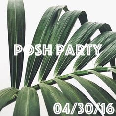 Co-Hosting my 1st Posh Party I will be co-hosting my very first Posh Party on 4/30/16 at 7:00pm PT + I am so excited! The theme will be announced as the date gets closer. Please like + share this listing for party announcements + updates! I will be on the prowl for awesome, beautiful listings from Posh compliant closets as Host Picks to share on the night of the party! Happy Poshing! Other