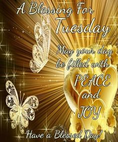 Good Morning, Happy Tuesday, I pray that you have a safe and blessed day! Happy Tuesday Morning, Happy Tuesday Quotes, Happy Weekend, Sunday Morning, Inspiring Quotes Tumblr, Inspirational Words Of Wisdom, Good Morning God Quotes, Good Morning Good Night, Morning Thoughts