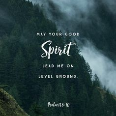 Teach me to do thy will; for thou art my God: thy spirit is good; lead me into the land of uprightness. Psalms 143:10 KJV http://bible.com/1/psa.143.10.KJV