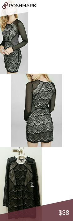 Express Mixed Lace and Fishnet Sheath Dress NWT Never worn. Bought for a function and ended up wearing something else. Open to REASONABLE offers. Measurements upon request. Thanks for looking! Express Dresses