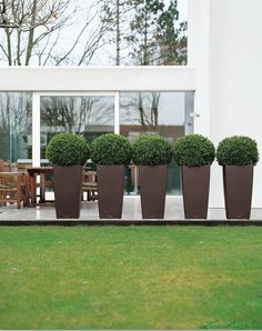 A line of identical clipped topiary buxus balls make an attractive feature of this exterior garden patio Tall Planters, Outdoor Planters, Outdoor Decor, Outdoor Spaces, Back Garden Landscaping, Modern Landscaping, Landscape Design, Garden Design, Raised Garden Beds