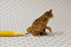 OOAK-1-12-realistic-dollhouse-miniature-brown-tabby-cat-IGMAFellow-Linda-Master