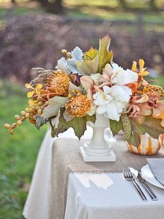 love the fall colors with the white vase. Makes you want to have a garden party