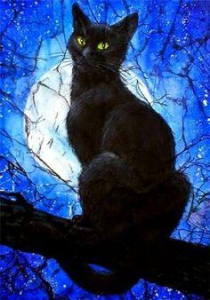 black cat blue moon Beautiful black cat picture. Incensewoman