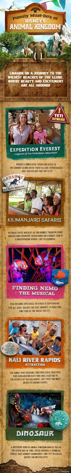 Start your expedition at the Walt Disney World Resort's wildest theme park with these Family Must Do's at Disney's Animal Kingdom.
