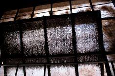 Dark 'n dusty #urbandecay