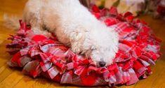 Neste inverno veja como é fácil fazer almofada para cachorro passo a passo, para aquecer o seu amigu