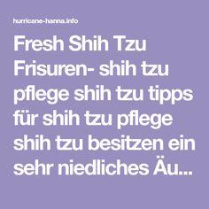 Fresh Shih Tzu Frisuren- shih tzu pflege shih tzu tipps für shih tzu pflege shih tzu besitzen ein sehr niedliches Äußeres