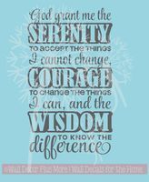Serenity Prayer- for our new President and for each of us personally!