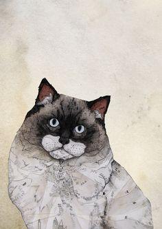 Mr Brunels Cat