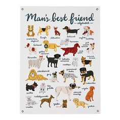 ABC chart with dogs - cute