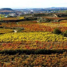 Cinco lugares hermosos para disfrutar de España en el Otoño