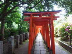 Tokyo Things To Do, Places In Tokyo, Places To Go, Secret Photo, Japanese Architecture, Secret Places, Instagram Worthy, Japan Travel, Travel Posters